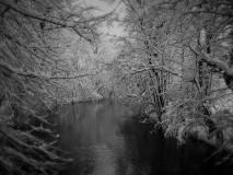 winter_IMG_0523